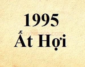 Tuổi Ất Hợi sinh năm 1995 thuộc mệnh gì, hơp màu nào?