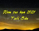 Tra sao chiếu mệnh chiếu hạn năm 2021 người tuổi Sửu